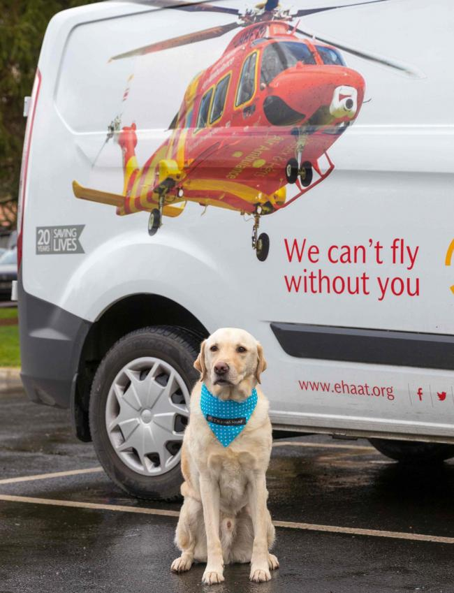 Essex & Herts Air Ambulance (EHAAT), is holding its annual Heli Hounds event on March 1. Photo: EHAAT