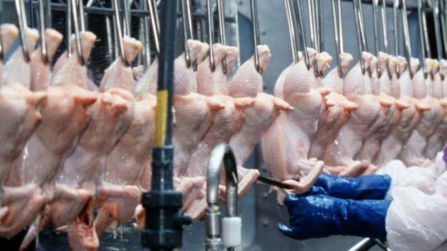 What is chlorinated chicken and why are people concerned about it?