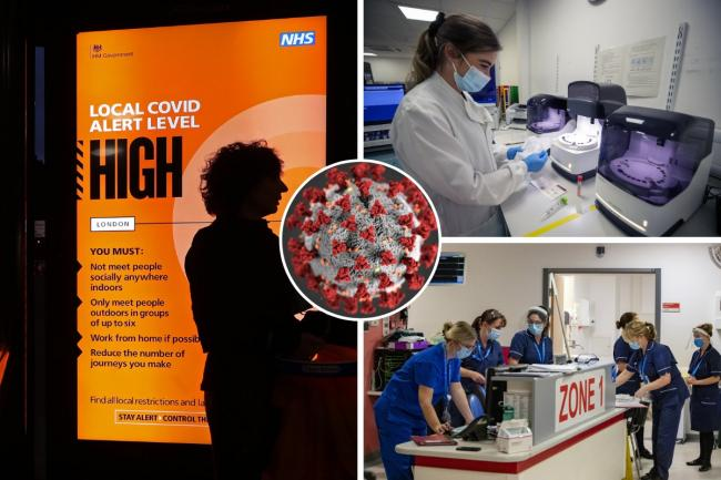 A top scientist ha warned the NHS is just one month from struggling to cope with the number of Covid-19 patients in hospitals. Photos: PA Wire/Canva