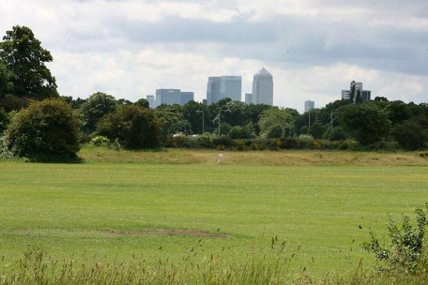 Peter Radley was cleared of a charge of indecent exposure on Wanstead Flats