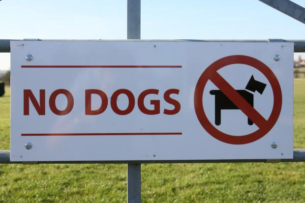 EPPING FOREST: Consultation into dog owner restrictions gets under way