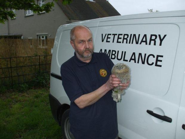 Wildlife rescuer Kevin Garten with the baby tawny owl. Photo courtesy of Ian Greer.