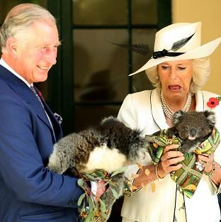 The Prince of Wales and Duchess of Cornwall met koalas in Adelaide