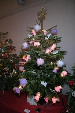 Epping Forest District Council will take your Christmas tree for recycling.