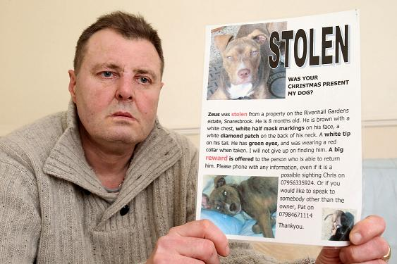 Chris Luby pictured in December appealing for Zeus to be returned