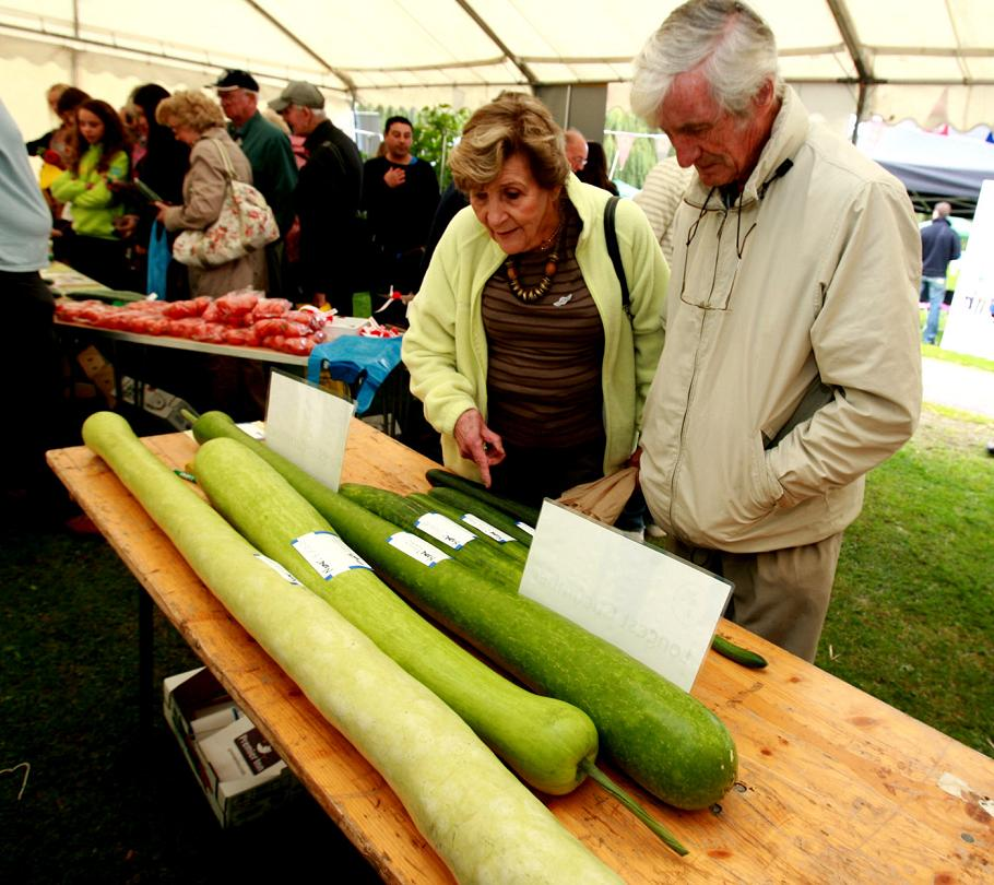 Crowds at a cucumber festival in Waltham Abbey