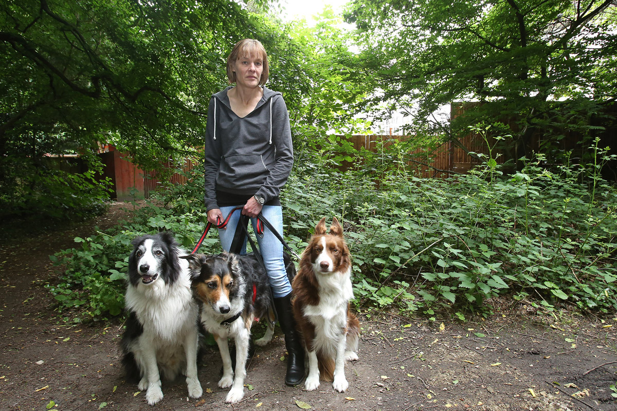 Nicola Milne with dogs Bob, Lulu and Roly, where cat Max was killed in an attack by an out of control rottweiller.