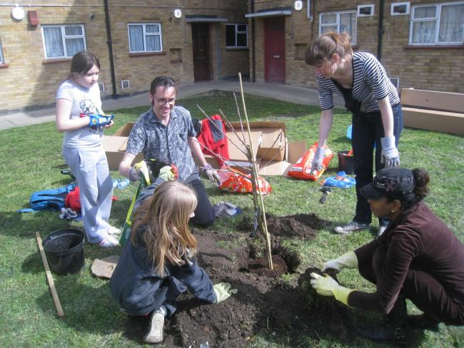 E17 Fruit Bag Walthamstow fruit tree planting community project