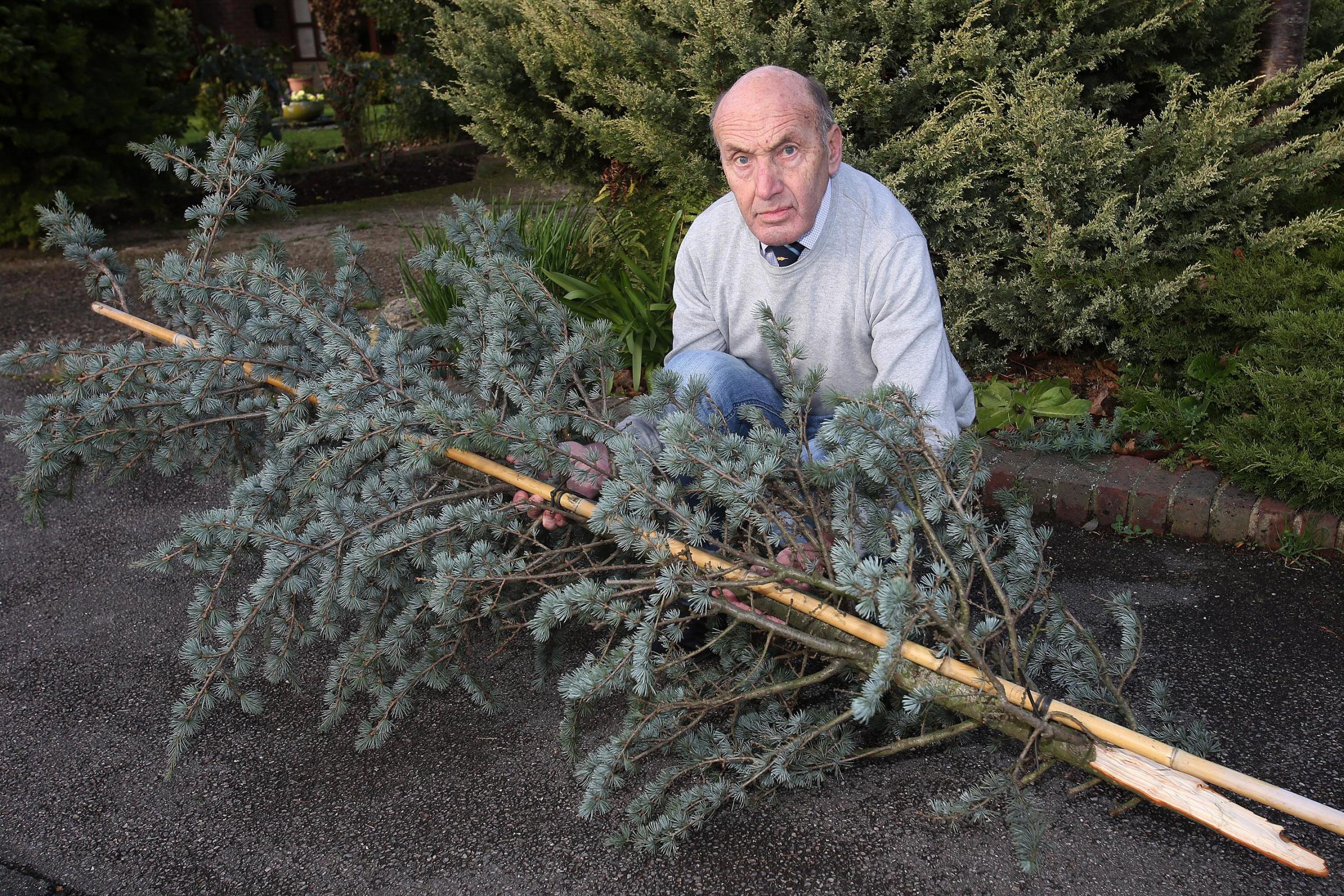 Ken Smith has had his wife's memorial tree returned