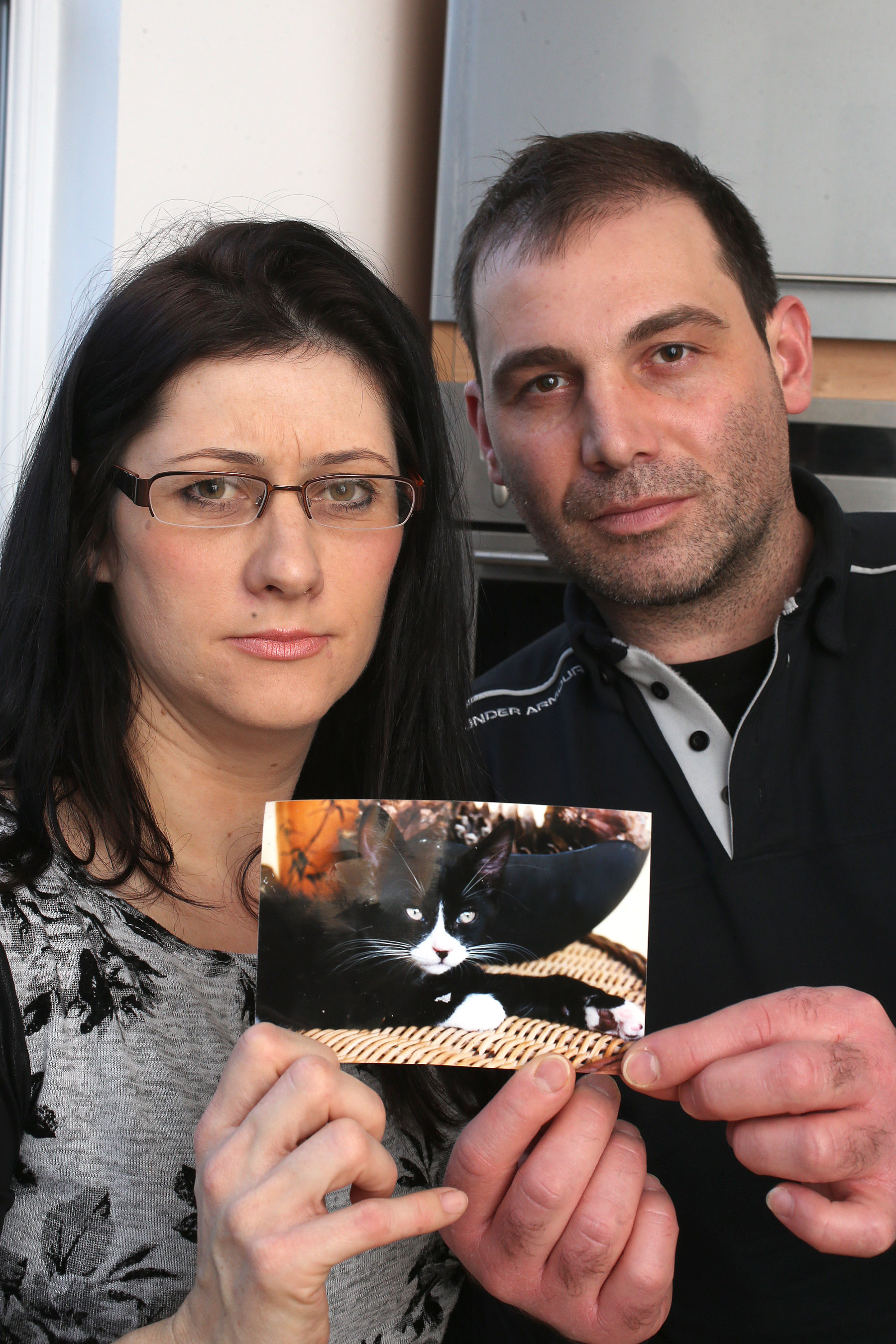 Family calls for tougher controls after cat killed by dog