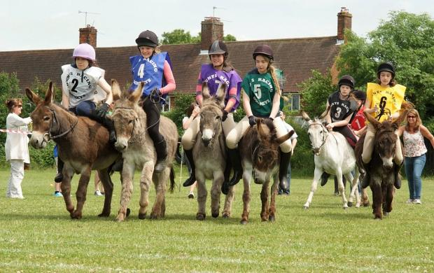 Donkey derby to return this weekend