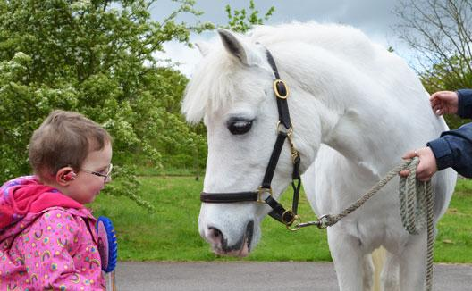 The Chigwell Riding Trust has raised £6000