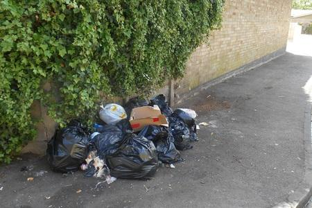 La Mandache repeatedly dumped commercial waste on the streets of Walthamstow