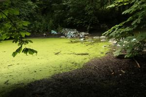 Wanstead Park land managers City of London Corporation have failed to secure a £5 million grant to improve conditions at the park after more than a year of promises