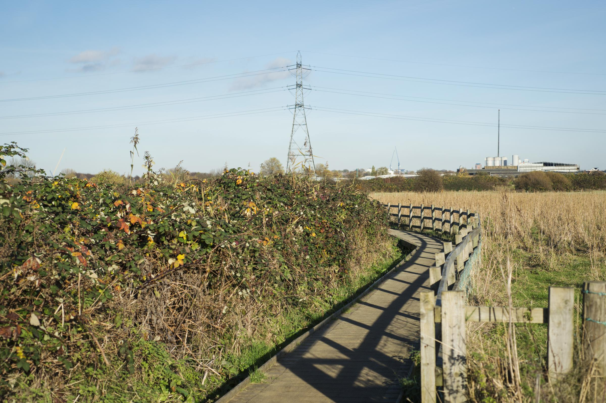 Lee Valley Regional Park.  Walthamstow Marshes, London E10.  18th November 2012. Photo Copyright: Eleanor Bentall